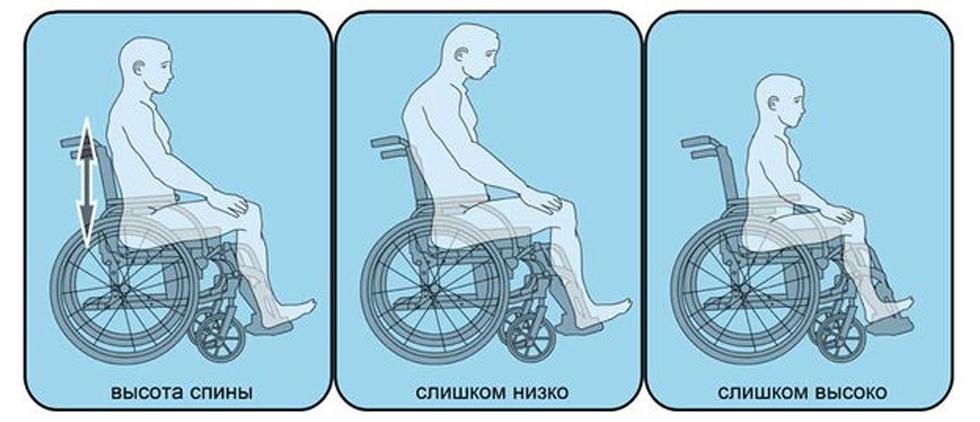 Высота спинки в инвалидном кресле