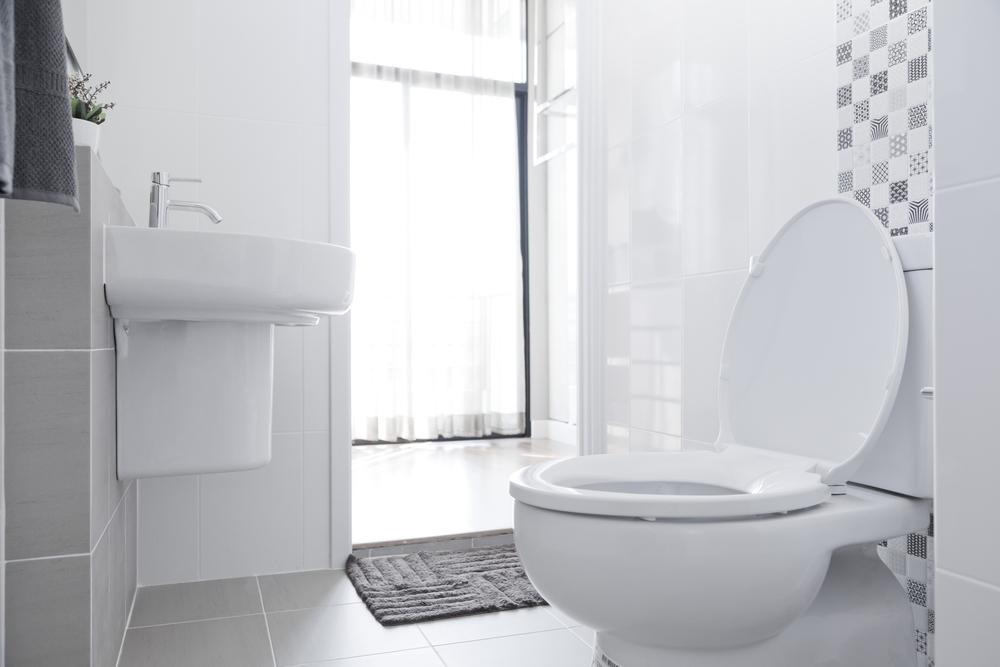 Стоимость туалета для инвалидов